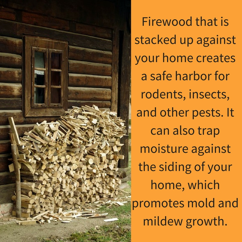 Never stack your firewood against the house!